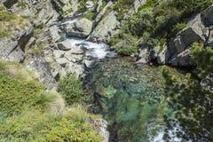 Água e rochas verdes da cachoeira Fotografia de Stock Royalty Free