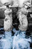 Água, a especiaria da vida imagens de stock royalty free