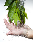 Água fresca de fluxo Fotografia de Stock