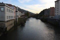 Água fresca e fria do rio europeu da floresta da cauda longa Fotografia de Stock
