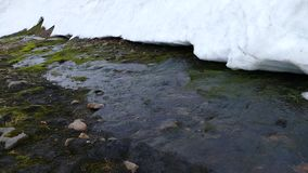 Água fria no córrego pequeno da geleira de derretimento filme