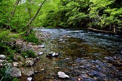 Água Gap de Delaware Fotos de Stock Royalty Free