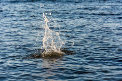 Água grande do respingo Foto de Stock Royalty Free