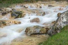 Água leitosa Fotos de Stock