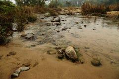 Água mineral Fotos de Stock