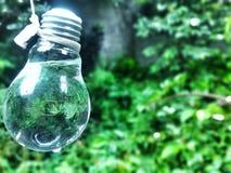 Água na lâmpada Imagem de Stock Royalty Free