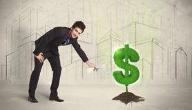 Água poring do homem de negócio no sinal da árvore do dólar no fundo da cidade Imagem de Stock