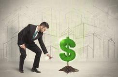 Água poring do homem de negócio no sinal da árvore do dólar no fundo da cidade Foto de Stock Royalty Free