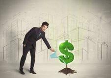 Água poring do homem de negócio no sinal da árvore do dólar no fundo da cidade Fotos de Stock Royalty Free
