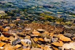 Água pouco profunda com pedras para dentro Foto de Stock Royalty Free