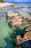 Água pouco profunda no resort da ilha maldivo Foto de Stock Royalty Free