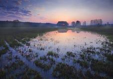 Água-prado. Imagem de Stock