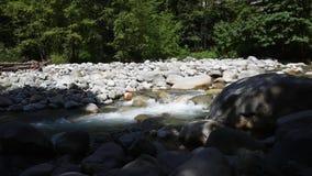 A água que corre através de Lynn Creek video estoque