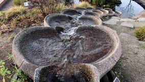 Água que desce abaixo do formulário do fluxo na lagoa vídeos de arquivo