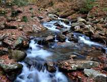 Água que flui abaixo do rio Imagem de Stock