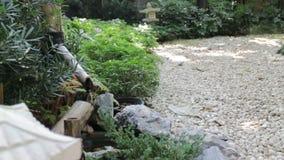 Água que flui fora de um bico de madeira em um jardim de pedra japonês video estoque