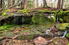 Água que flui sobre rochas Imagem de Stock Royalty Free