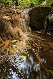 Água que flui sobre rochas em um Little Falls Fotografia de Stock