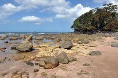 Água quente Bech - Nova Zelândia Fotografia de Stock