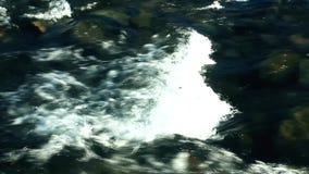 Água Raging na opinião lateral do disjuntor do rio da montanha video estoque