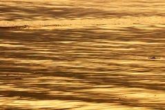 Água Rippled Fotografia de Stock Royalty Free