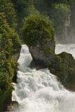 Água selvagem Fotos de Stock