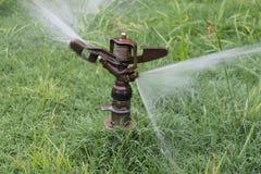 Água Sprinker Fotos de Stock