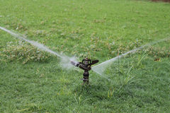 Água Sprinker Foto de Stock