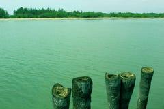 Água traseira do mar com cerca da palmeira foto de stock