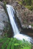 Água tropical da avaliação das cachoeiras fotografia de stock royalty free