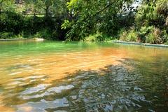 Água verde & clara imagens de stock