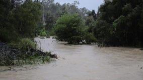 Águas da inundação após a chuva pesada em Brisbane, Queensland filme