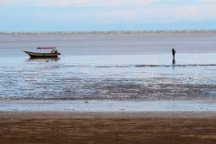Águas da maré baixa em Bako Fotografia de Stock