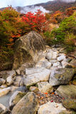 Águas de mola natural em Owakudani com folhas de outono Fotos de Stock