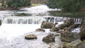 Águas de relaxamento da cachoeira do rio, espirro atual em pedras, eternidade, tempo video estoque