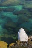 Águas desobstruídas de Tahoe do Aqua fotos de stock royalty free