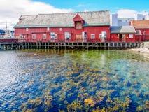 Águas do espaço livre de Tromso Foto de Stock Royalty Free