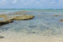 Águas do verde azul Fotografia de Stock Royalty Free