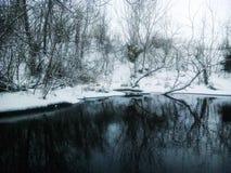 Águas preto e branco Fotografia de Stock Royalty Free