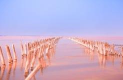 Águas vermelhas do lago de sal no verão fotografia de stock