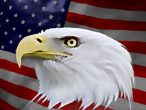 Águia americana (bandeira) Imagens de Stock Royalty Free