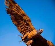A águia americana de Magnificient como uma escultura do metal imagem de stock royalty free