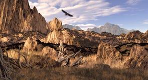 Águia calva no Colorado Montanhas Rochosas imagens de stock