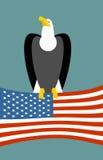 Águia calva no fundo da bandeira americana Símbolo nacional dos EUA do pássaro Grandes pássaros do estado de rapina e de bandeira Imagem de Stock