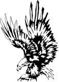 Águia de ataque 3 ilustração royalty free