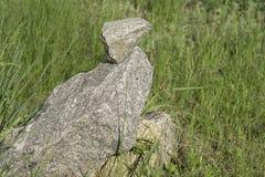 Águia de pedra Foto de Stock