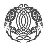 Águia do céltico do vetor Ornamento étnico Fotos de Stock Royalty Free