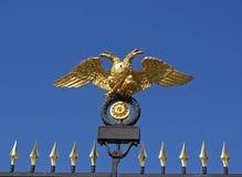 águia Dobro-dirigida Fotografia de Stock Royalty Free
