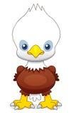 Águia dos desenhos animados Fotos de Stock Royalty Free