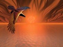 Águia flamejante Fotografia de Stock Royalty Free